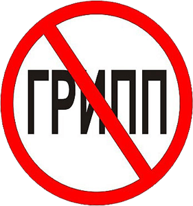 1329931293_polezno-znat-chto-201-210-gripp