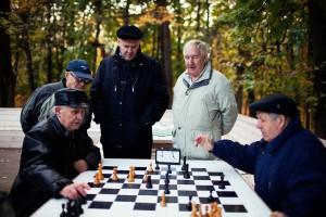 Шахматы являются одним из «интеллектуальным хобби».